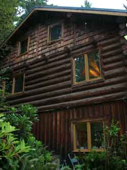 weathered log cabin